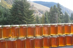 Melissa Bees' Chemical-Free Hive Honey