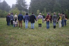 CoHousing is for the Bees: Oakleigh Meadow Co-Housing Workshop, Eugene OR