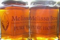 Honey Made in America: Raw, unfiltered, chemical free hive honey naturally imbued with pollen and propolis.