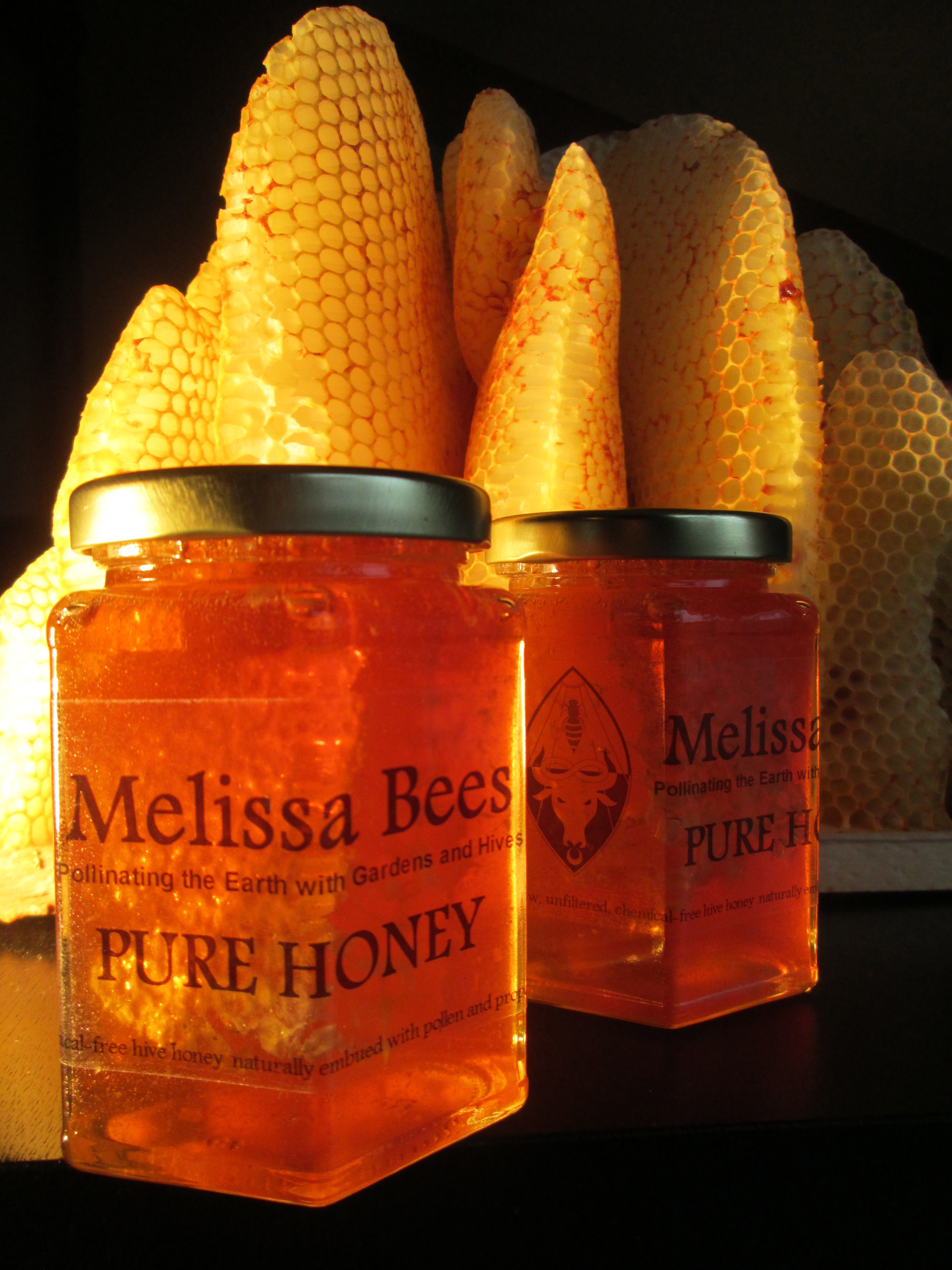 Chemical & Treatment-Free Hive Honey