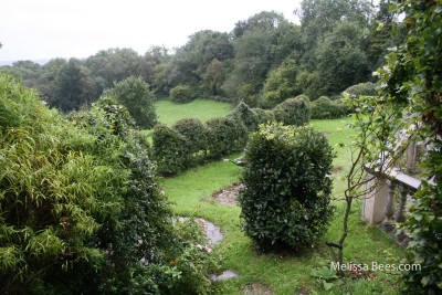 Natural Beekeeping Trust-Garden View