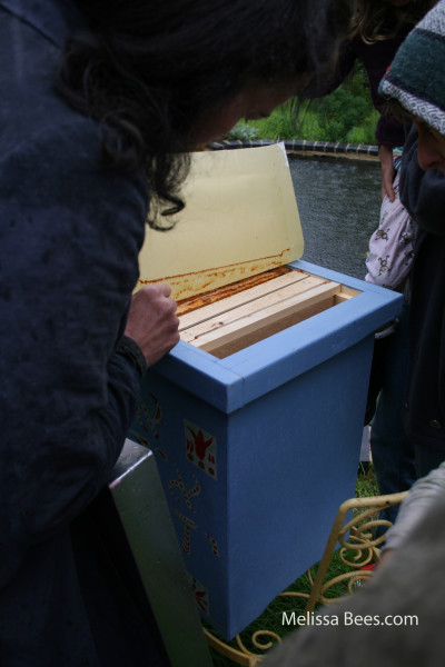 Natural Beekeeping Trust-Golden Revealed