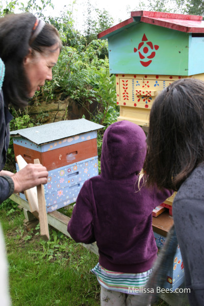 Natural Beekeeping Trust-Heidi