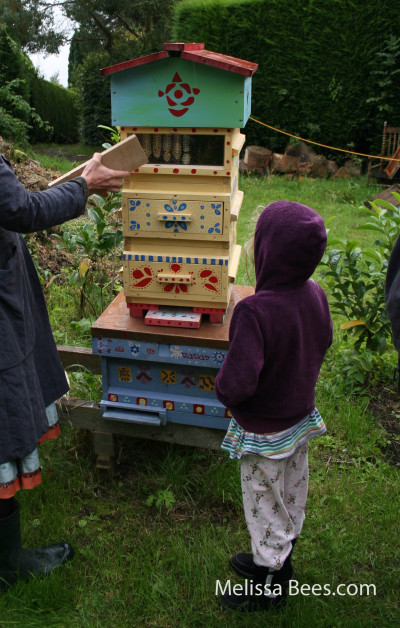 Natural Beekeeping Trust-Warre